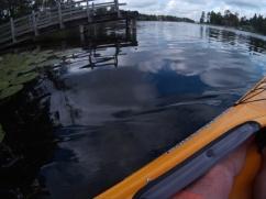 Park Rapids area lake
