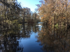 access to Suwannee River