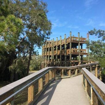 pinellas bike trail 2