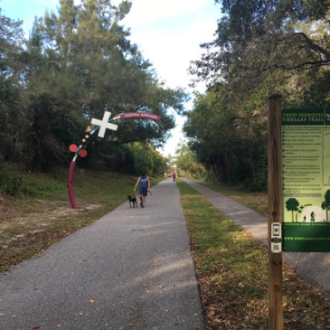 pinellas bike trail 3