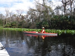 wekiwa springs kayaking deb 4