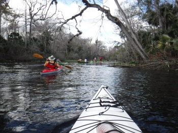 wekiwa springs kayaking traffic 1