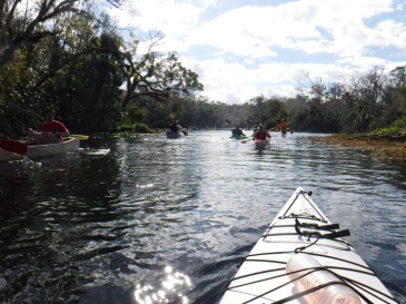 wekiwa springs kayaking traffic 2