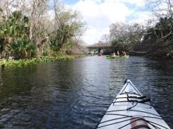wekiwa springs kayaking wekiwa island