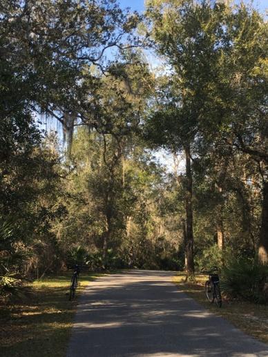 Lake Beresford Bike Trail