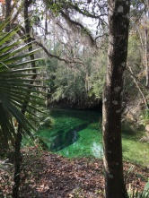 Blue Springs Mouth 3