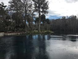 Silver Springs 10