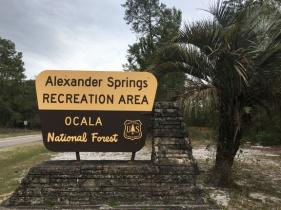 alex spring sign