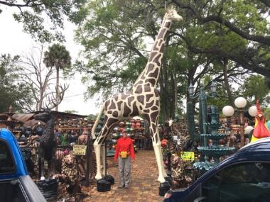 deb giraff