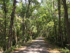 Withlacoochee State Trail