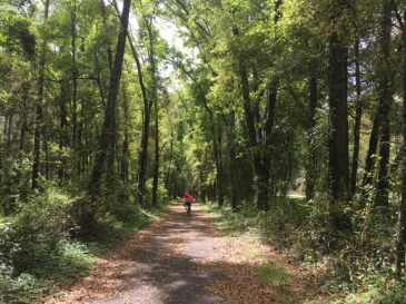 Four Freedom Trail 1