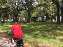 Four Freedom Trail trailers