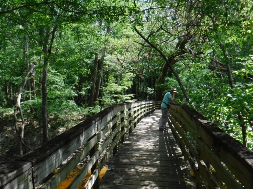 """Deb is singing """"Way down upon the Suwannee River."""