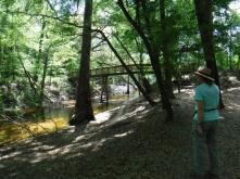 Suwannee State Park