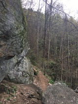 Vogel SP trail 18