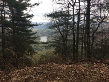 Vogel SP trail 9