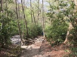 Alum Cave Nature Trail 03
