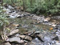 Alum Cave Nature Trail 04