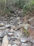 Alum Cave Nature Trail 05