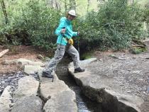 Alum Cave Nature Trail 07