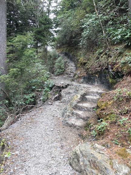 Alum Cave Nature Trail 11