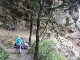 Alum Cave Nature Trail 12
