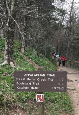 New Found Gap trail sign