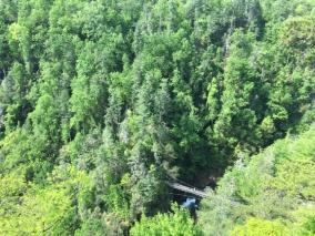 Tallulah Gorge SP 3