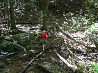 Unicoi, Smith Creek 20