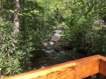 Unicoi, Smith Creek, Anna Ruby 1