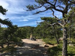 Acadia Hike Bike 29