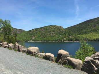 Acadia Park Biking View