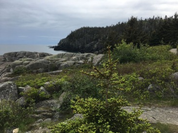 Quioddy Head State Park, MEQuioddy Head State Park, ME