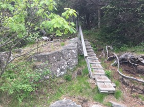Quioddy Head State Park, ME