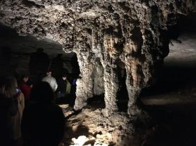 Mammoth Cave 42