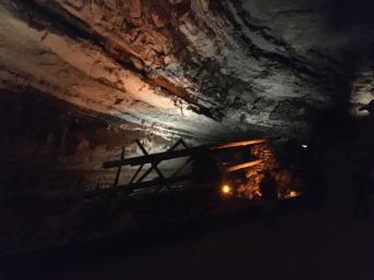 Mammoth Cave 58