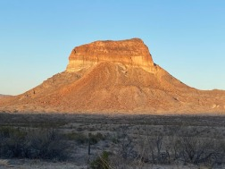 Big Bend National Park B016