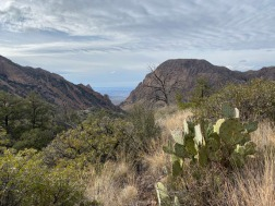Big Bend National Park B027