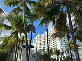 South Beach051